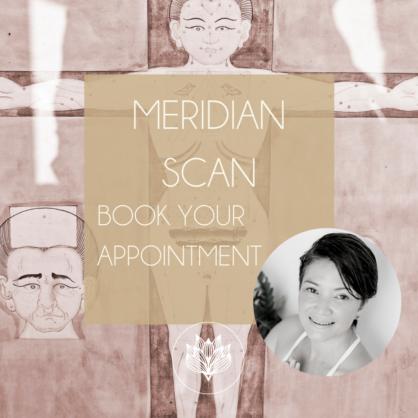 Meridian Scan