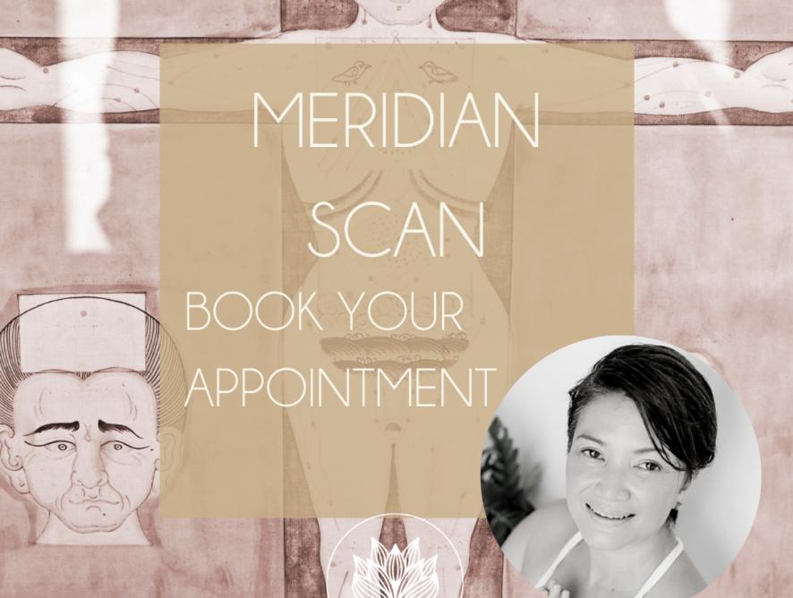 Scan van Meridianen